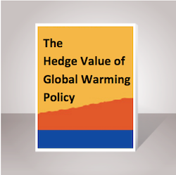 Hedge Value of Climate Policy